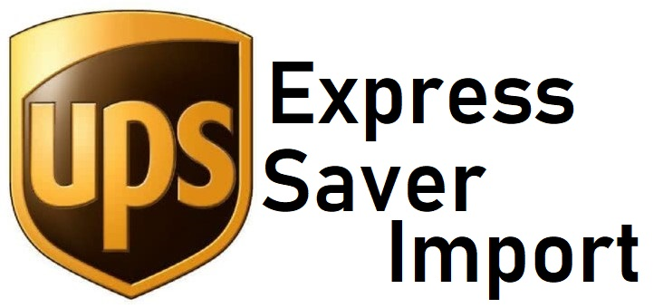 express_saver_import_logo.jpg